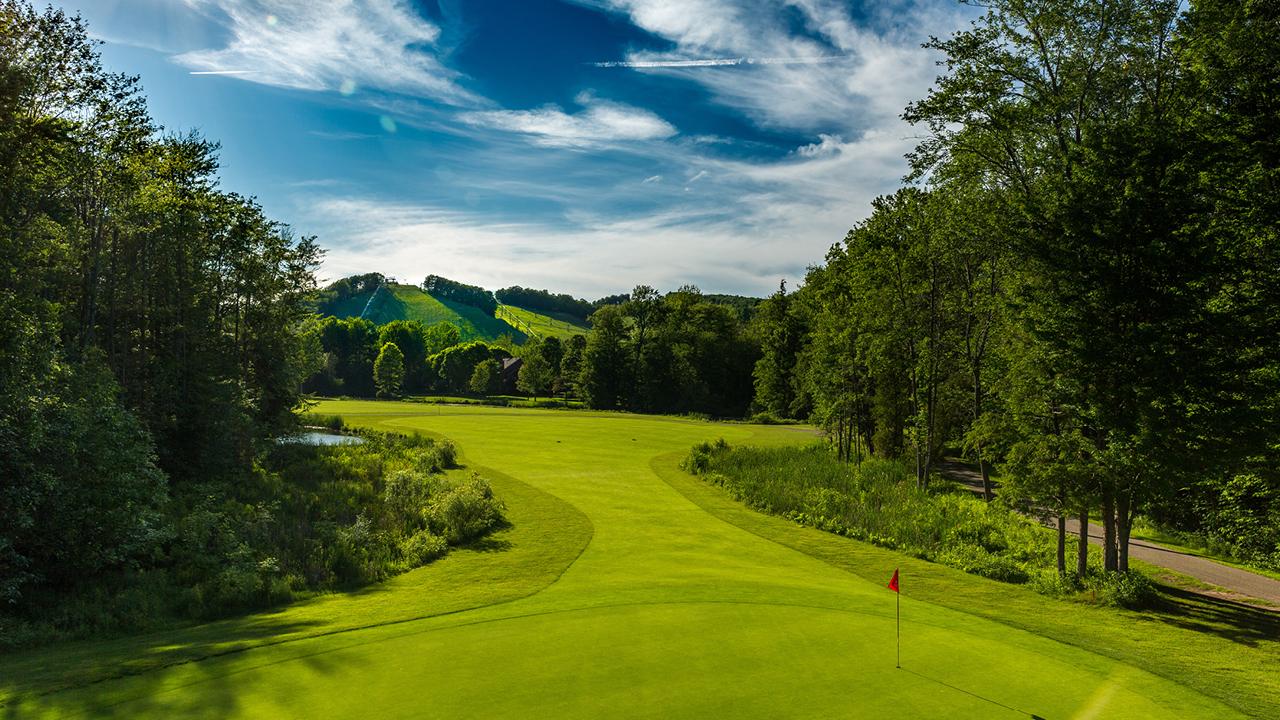 Zoom Golf Background